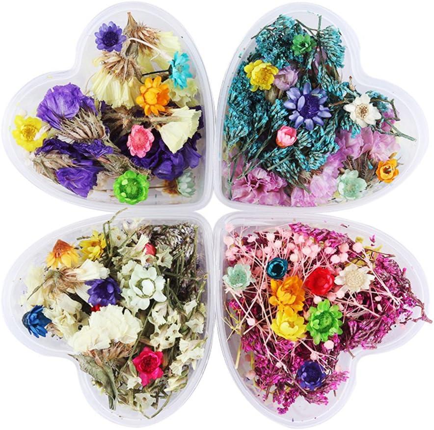 1caja mixto flores secas Nail Art DIY preservar caja de flores con forma de corazón botella de cristal Decor