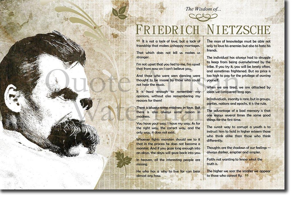 Amazon Introspective Chameleon The Wisdom Of Friedrich
