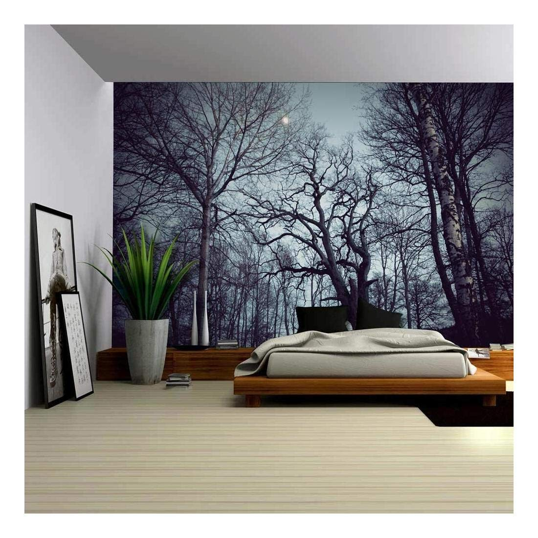 Gazing View of The Sky from The Inside of a Forest - Wall Mural, Removable Sticker, Home Decor - 100x144 inches