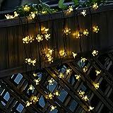 Cadena de Luce Solar Navidad 50 LED de de Flores Melocotón de Energía Navidad Impermeable para Fiesta Navidad (Blanco cálido) LED luminosa Guirnalda Luz