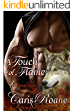 A Touch of Flame: A Paranormal Romance (The Flame Series Book 5)
