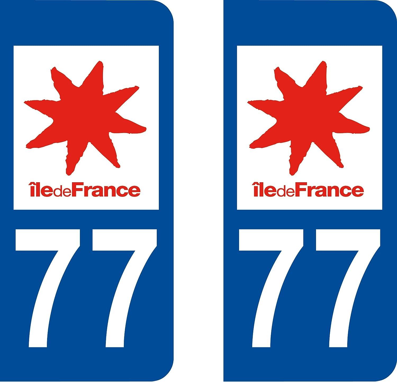 SAFIRMES 2 Stickers Autocollant Style Plaque Immatriculation d/épartement 16