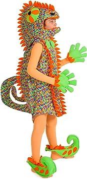 Disfraz de Camaleón para Niños: Amazon.es: Juguetes y juegos