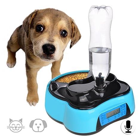 Comedero Perro Automatico 1.6L Dispensador Agua Gatos Alimentador Gatos con Temporizador,Antideslizante y Grabación