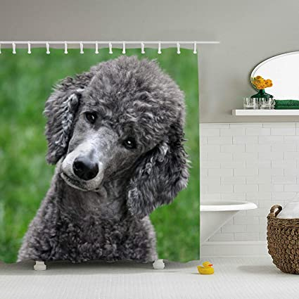Amazon MAILL Shower Curtain Poodle With Hooks For Bathroom