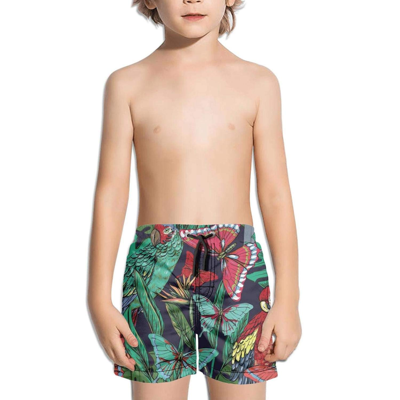 Etstk Parrots and Butterflies Kids Quick Dry Beach Shorts for Boys