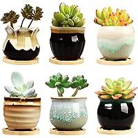 Brajttt 2.5 Inch Ceramic Succulent Planter Pot with Drainage,Planting Pot Flower Pots,Small Planter Pots for Mini Plant…