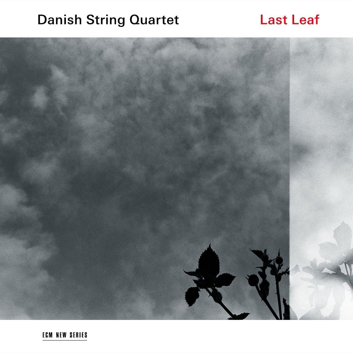 Last Leaf [LP]