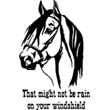 """CreativeSignsnDesigns Horse That Might not be rain on Your Windshield - Horse Trailer Decal (22""""x14"""", Black)"""