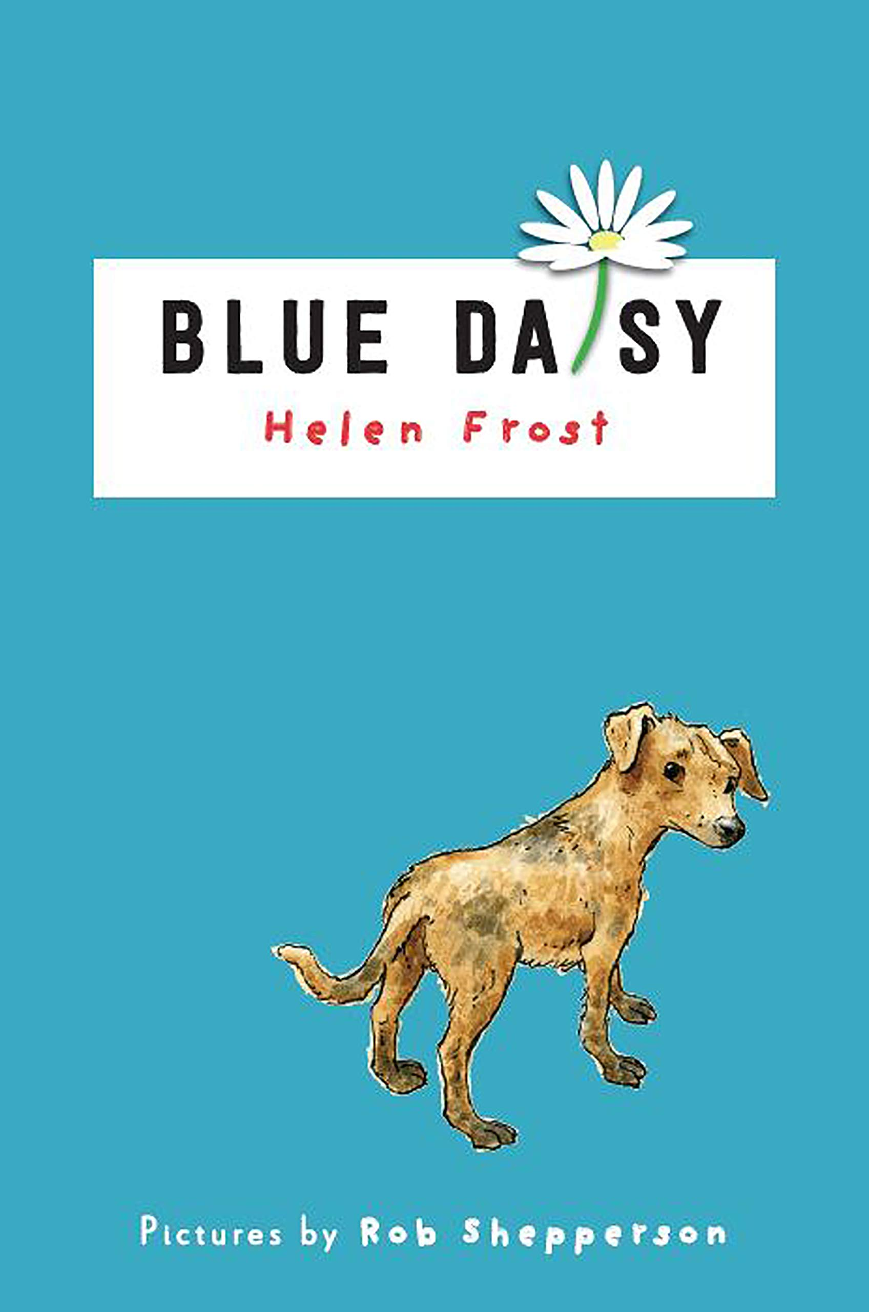 Amazon.com: Blue Daisy (9780823444144): Helen Frost, Rob ...