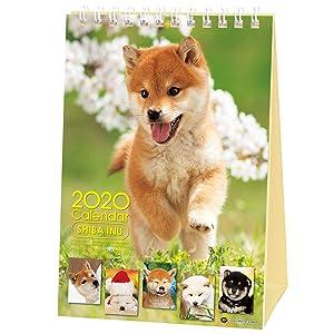 Shiba Inu Desktop Calendar 2020 with Adorable Shiba Dog Puppies' Pictures (Desktop Calendar 2020)