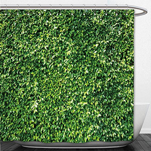 Interestlee Shower Curtain leaves of ivy covering the wall 363036692 (Pch Canopy Bed)