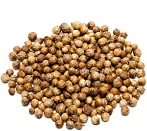 16 oz Whole Coriander Seed for Seasoning-Add Bursts of citrusy, Herbal Flavor to Your Food- A Common Spice Used in Home Brewing and Pickling Recipes-Country Creek LLC
