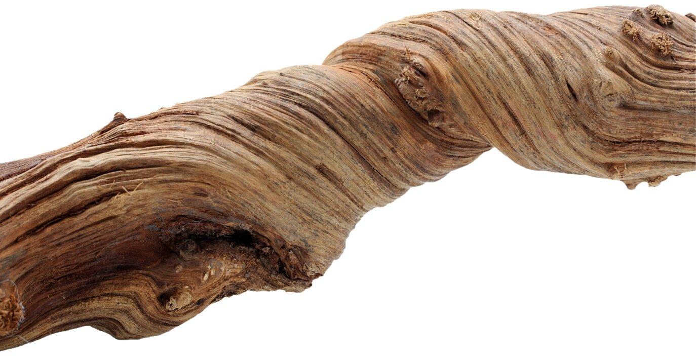 REPTILES PLANET Liane naturelle pour terrarium reptiles Jungle Liana longeur 100-120 cm diamètre 5-8 cm REPU5