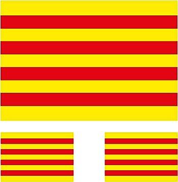 Custom Vinyl Bandera Oficial Catalana (10cm) Pegatina de Vinilo Adhesivo +2 Bonus: Amazon.es: Coche y moto