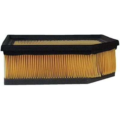 Luber-finer AF7942 Heavy Duty Air Filter: Automotive