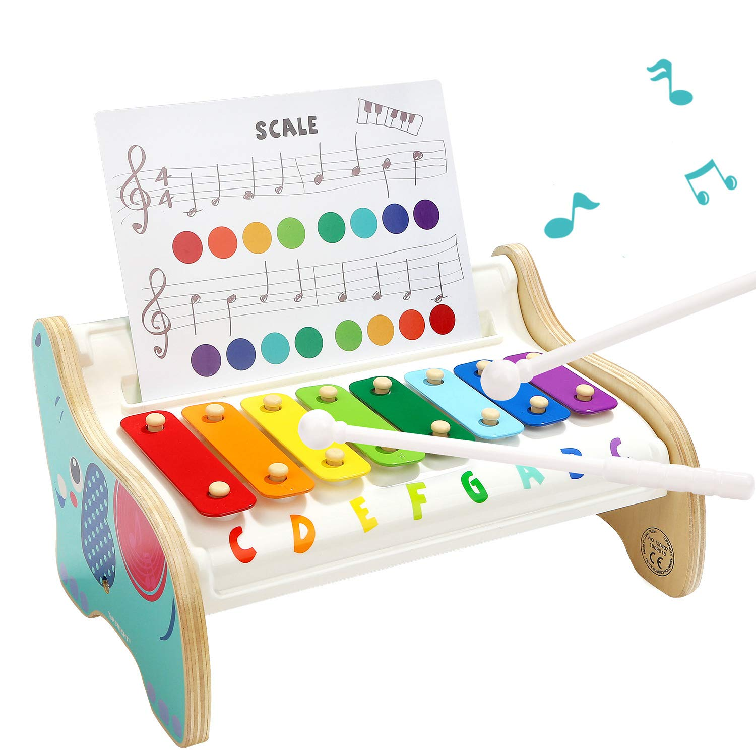 TOP BRIGHT Childs Xylophone Toy for 18 Month Old, Baby Instruments for 1 Year Old Boy and Girl Birthday Present