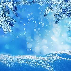 6 x 6 pies azul de invierno tema fondo Frozen Cedar blanco