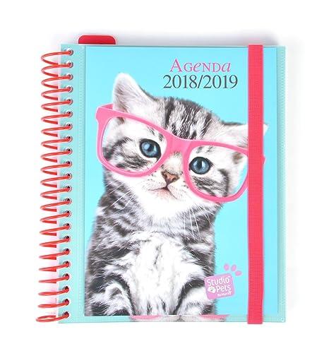 Amazon.com: Grupo Erik Editores Studio Pets - Agenda escolar ...