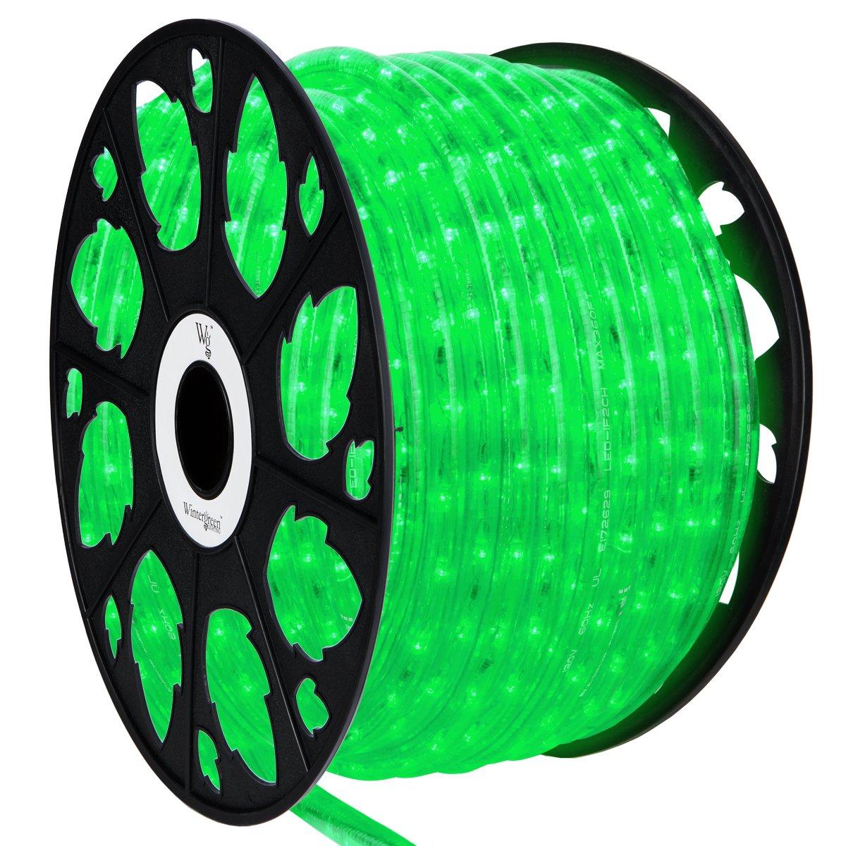 Wintergreen Lighting LED Rope Light, LED Flexible Light Rope String Light Outdoor – LED Light Rope Bedroom Portable LED Light Rope, 120V, ½ Inch, 2-Wire (150 ft, Green)