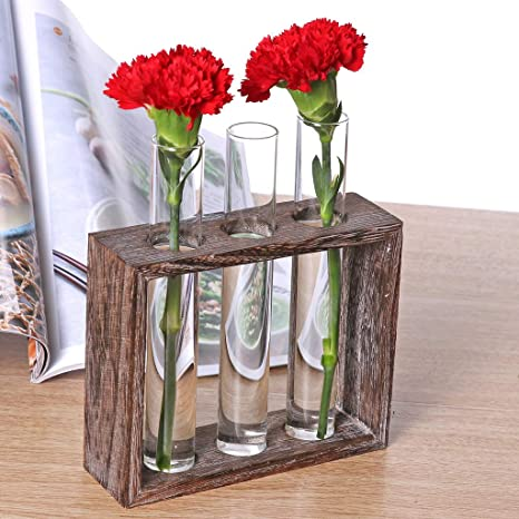 Plant Hydroponic Bonsai Crystal Glass Test Tube Vase Flower Pots w// Wooden Stand