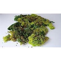 Javis Mixed Green Model Scenic Lichen - Approx 60 Grams