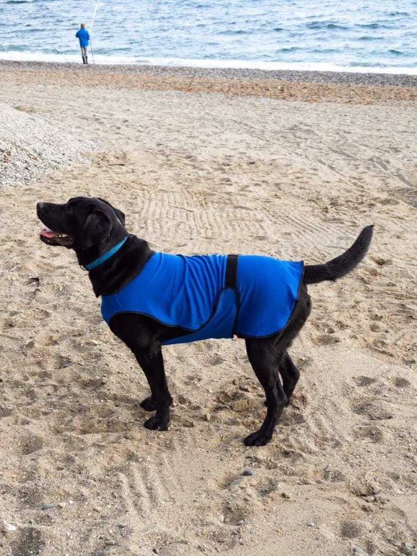 L/éger Lautus Pets Gilet de refroidissement pour chien antibact/érien