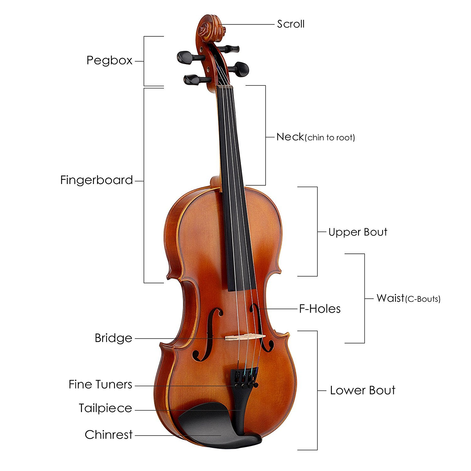 Mugig Violin 4/4 Full Size, Solid Wood Violin Kit with Case, String and Rosin, Ebony Fingerboard, Pegs, Chin Rest