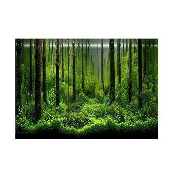 Semme Póster semimetálico para Acuario, Papel de Fondo de PVC, Adhesivo para Fondo de Bosque bajo el Agua, póster de Fondo para decoración de Papel: ...