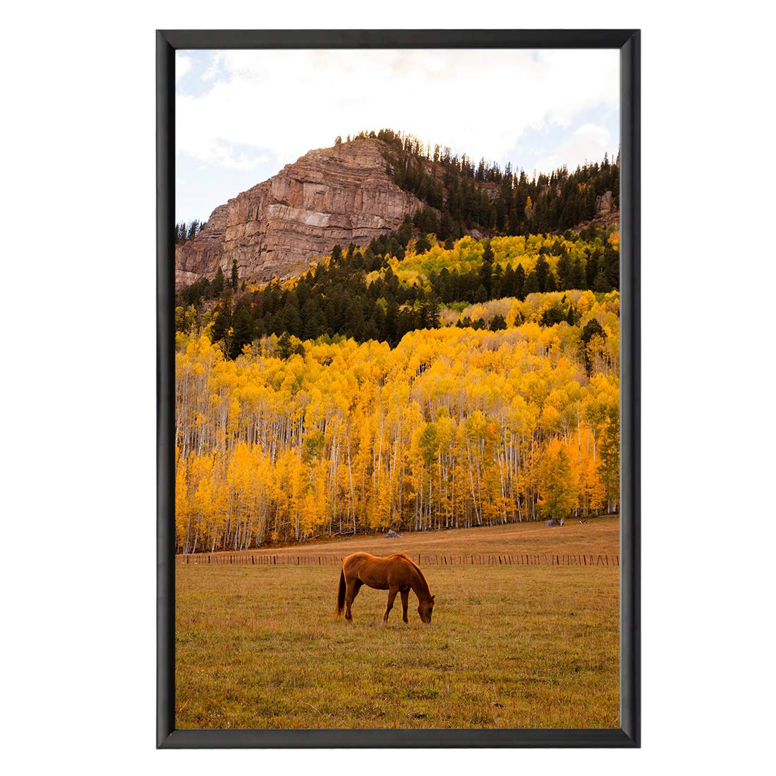 HAITIAN Snap Poster Frame for 24x36 Inch Poster, Front Open Wall Hanging Style, Durable Aluminum Profile, Color Black