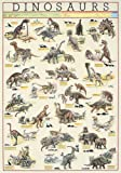 empireposter - Educational - Bildung - Dinosaurs Dinosaurier Version 6 - Größe (cm), ca. 68x98 - Poster, NEU - Version in Englisch - Beschreibung: - Bildung, Lernposter - englische Version -