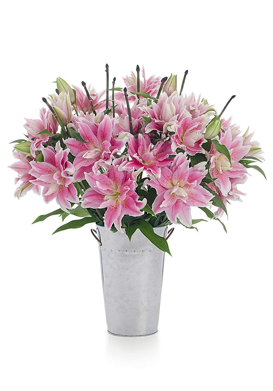 Stargazer Barn - Large Rose Lily Bouquet with Vase - Farm Fresh