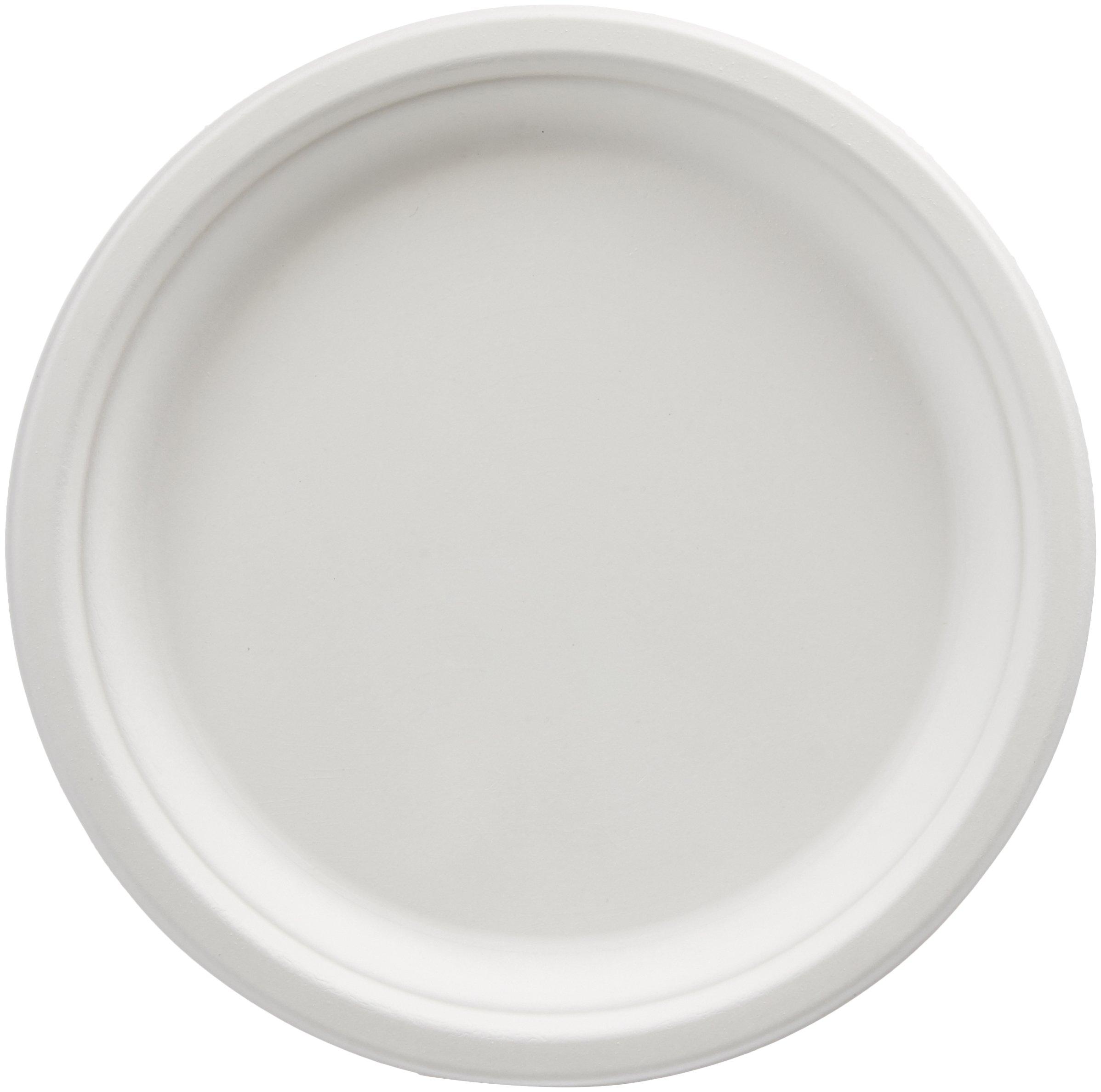 AmazonBasics Compostable Plates, 10-Inch, 500-Count by AmazonBasics