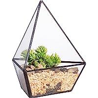 NCYP Modern Three Sides Glass Geometric Terrarium Garden Small Black Air Plants Holder Containers Balcony Display…