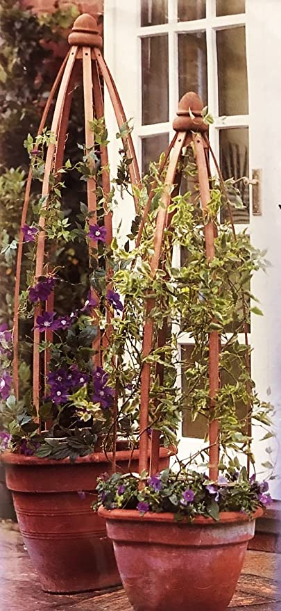 1 Obelisco columna de madera para arrampicatura Plantas 1, 3 ...