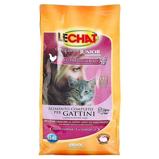 Monge - Pienso Gatos lechat Kitten 1.5 kg con Pollo y Omega 3 ...