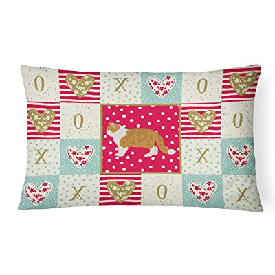 Caroline's Treasures CK5614PW1216 Exotic Shorthair #1 Cat Love Canvas Fabric Decorative Pillow, 12H x16W, Multicolor : Garden & Outdoor