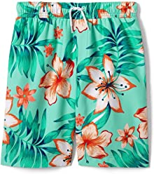 86b338c73e Lands' End Little Boys Printed Swim Trunks, L, Sea Spray Print