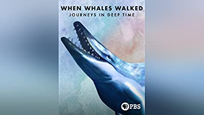 When Whales Walked: A Deep Time Journey