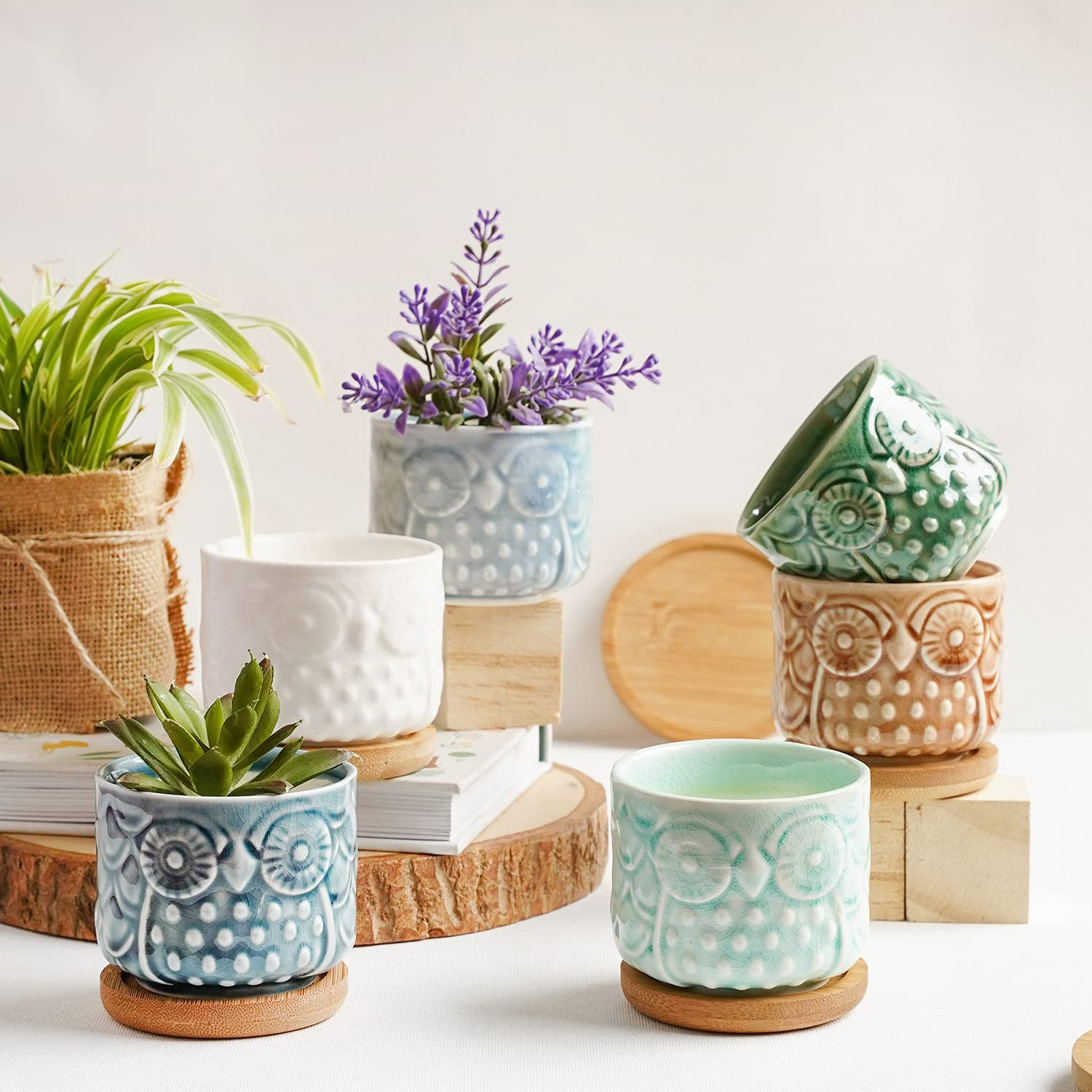 Succulent Pots, ZOUTOG 2.6 inches Ceramic Pots for Plants, Suitable for Indoor Use, with Drain Holes and Bamboo Trays (Plants NOT Included)