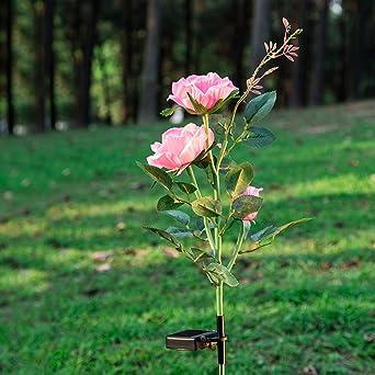 Rosas con luz LED solar de Creny, 3 LED, resistentes al agua, lámpara decorativa para jardines y balcones, iluminación: Amazon.es: Iluminación