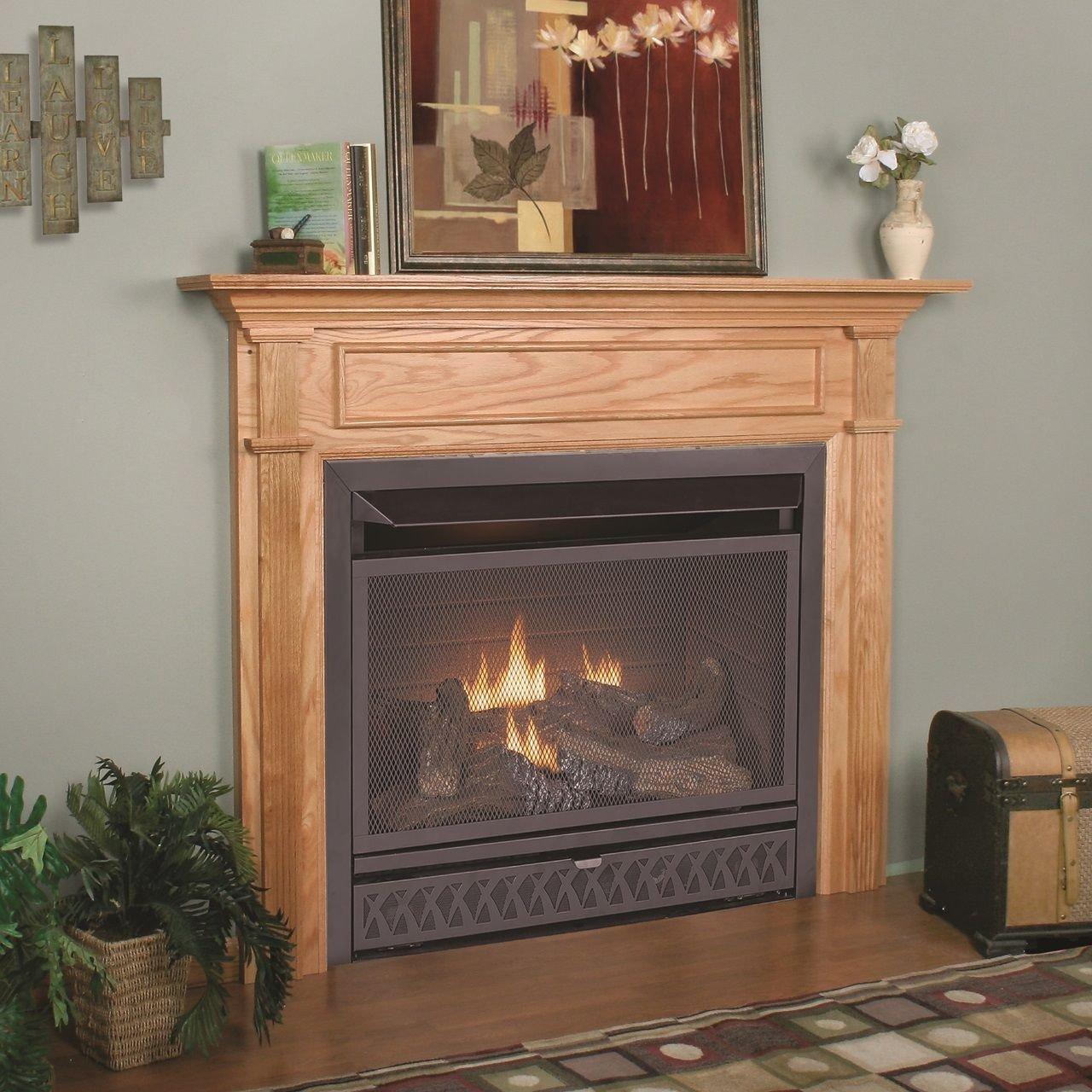 amazon com procom vent free dual fuel fireplace insert model