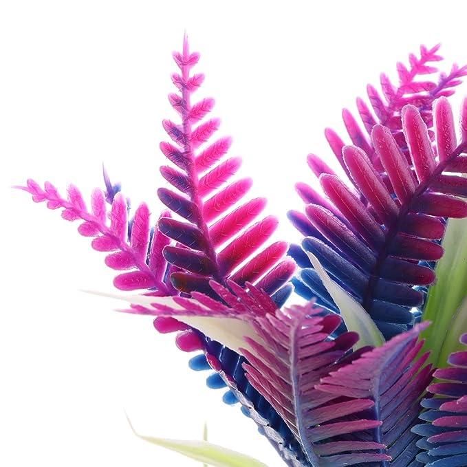 Xuniu Plantas acuáticas Flores de Navidad Acuario de Peces Acuario Decoración de Primer Plano (12x7cm): Amazon.es: Hogar