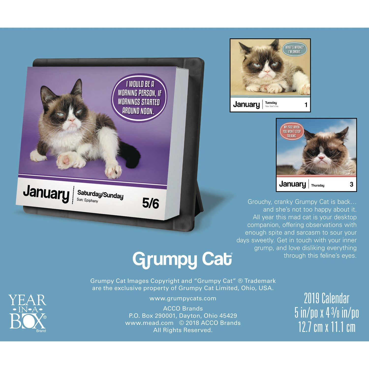 2019 Calendar July 1 Grumpy Cat Year In A Box 2018