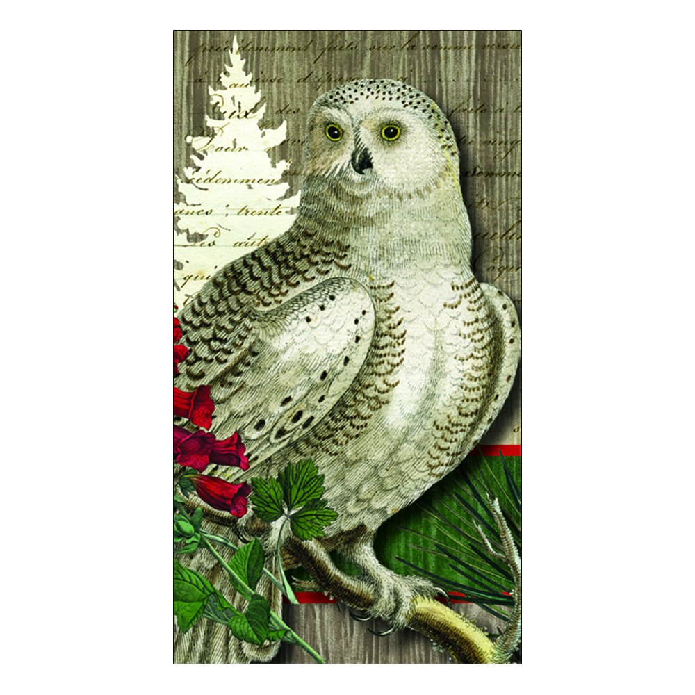 Paperproducts Design Winter Woods Owl Guest Towel, Multicolored, 15-Pack