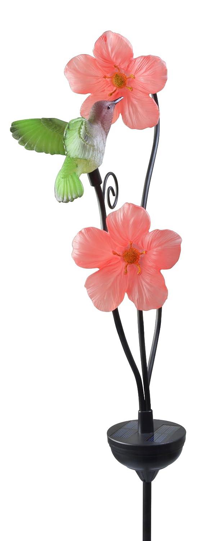 Lovely Solar Garden Flower With A Sweet Hummingbird