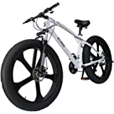 Sturdy Alloy Wheels Fat Mountain Bike with 21 Speed Gears and Black Alloy Wheels