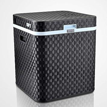 JGWJJ Compresor Refrigerador Congelador, 48L Coche Viaje ...