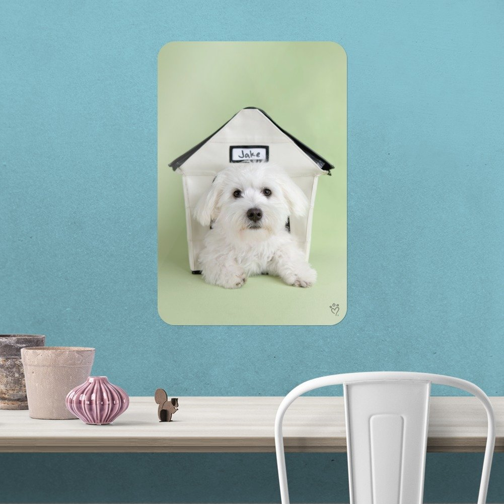 amazon com graphics and more bichon frise maltese puppy dog in rh amazon com dog in house photo dog in house sign if house fire