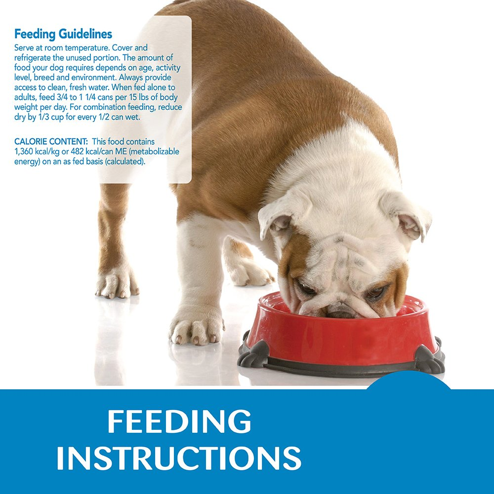 Wellness Simple Natural Grain Free Wet Canned Limited Ingredient Dog Food, Turkey & Potato, 12.5-Ounce Can (Pack of 12) by Wellness Natural Pet Food (Image #16)